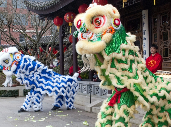 lion-dance-cny__page-header-gallery